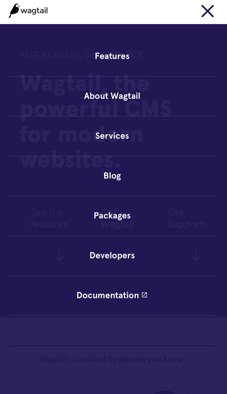 site internet wagtail mobile